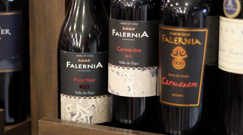 Vinícola Falernia