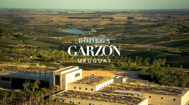 Bodega Garzón na World Wine Experience