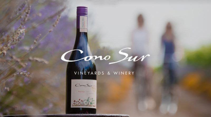 Cono Sur na World Wine Experience