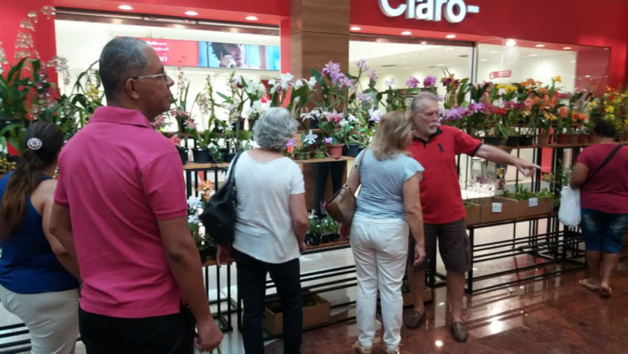Feirade Exposição e venda deOrquídeasacontece no Shopping Santa Úrsula